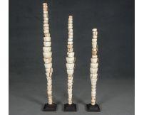Escultura de conchas de papua