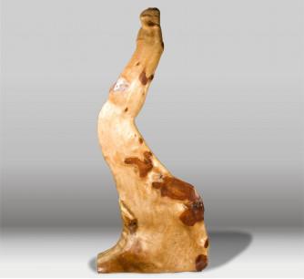 Escultura de raíz