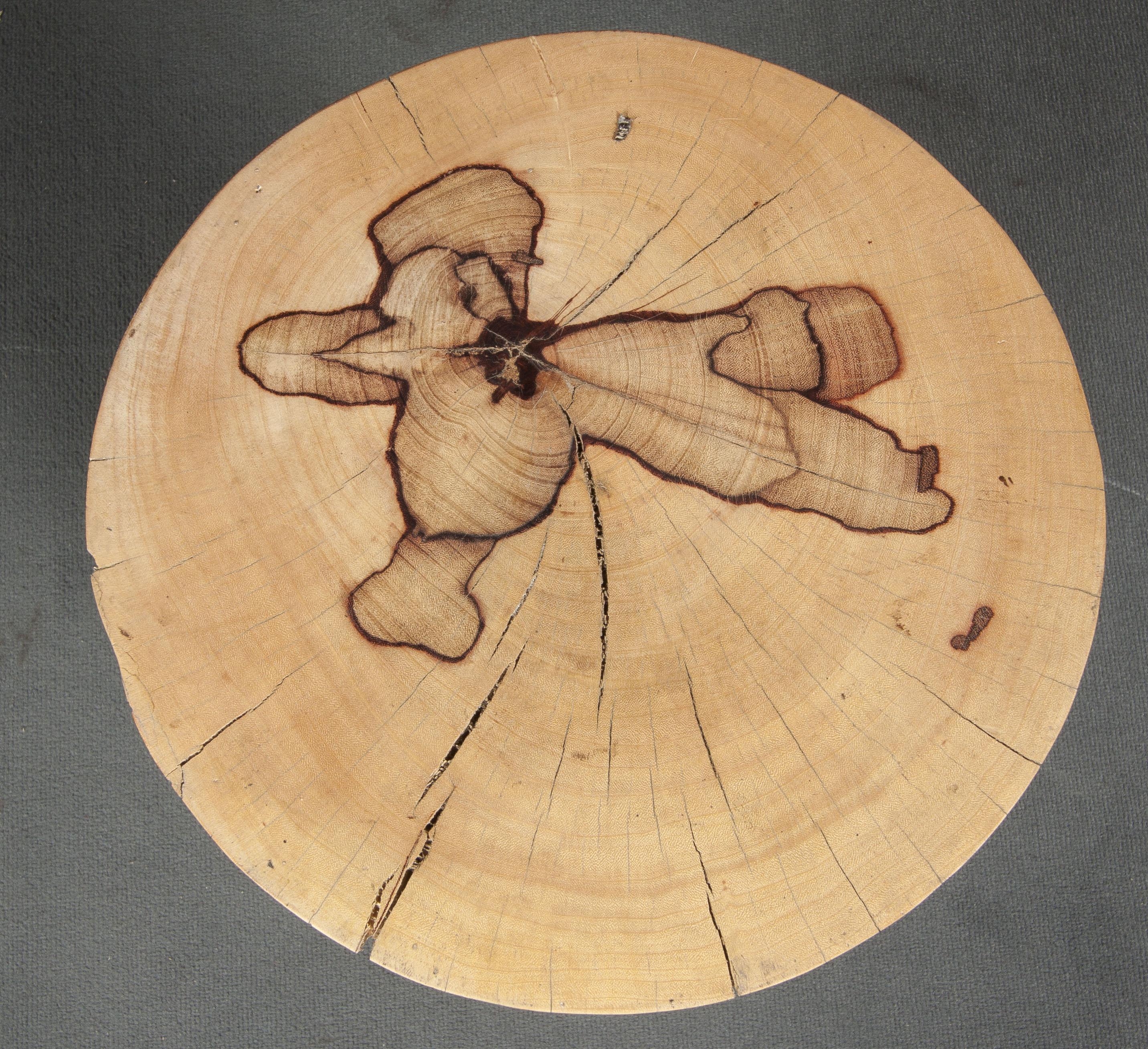 Taburete de tamarindo curvo