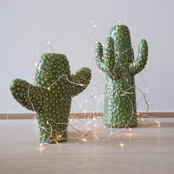 Jarrones cactus juveniles en tonos verdes