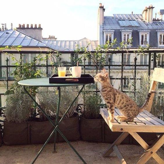 maceteros bacsac en balcon con vistas